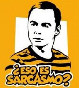 imagen de Sheldon, personaje de ficcion, preguntando si eso es sarcasmo.