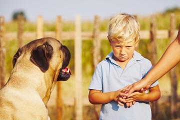 niño con miedo a los perros